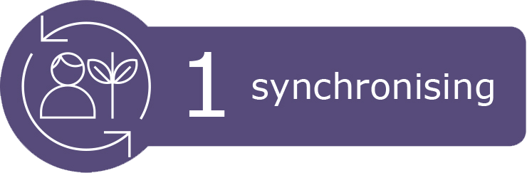 1 sync paars transparant